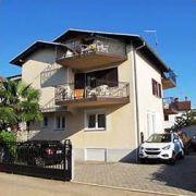 Apartamenty Kivi Novigrad