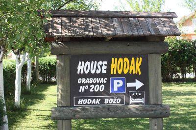 Dom Hodak