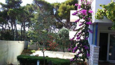 Villa Pineta - Vinkuran