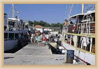 Wyspa Silba - Port